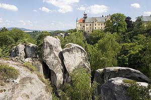 Čekijos Rojus