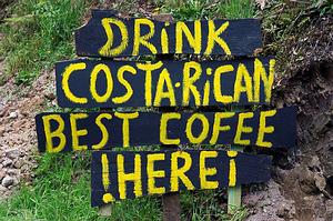 Kosta Rikos kava