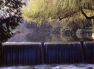 Londonas, Modern Hall Park