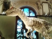 Mane išgąsdinęs dinozauras