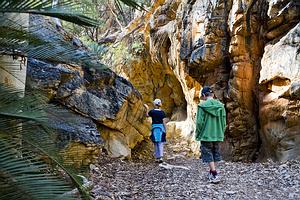 Žygiavimas Larapinta Trail, Australija