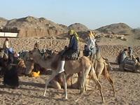 Egiptas 2