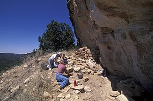 Archeologinių kasinėjimų kelionės po Crow kanjoną, JAV