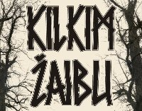 festivalis_KILKIM ŽAIBU