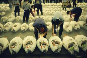 Tsukiji Fish Market, Tokijas, Japonija